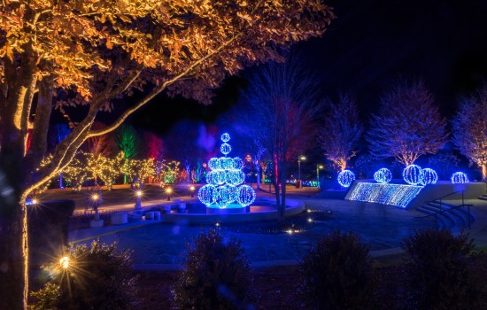 The Arboretum visitation grows to surpass 500,000 in 2014 and Winter Lights debuts as the first major nighttime event