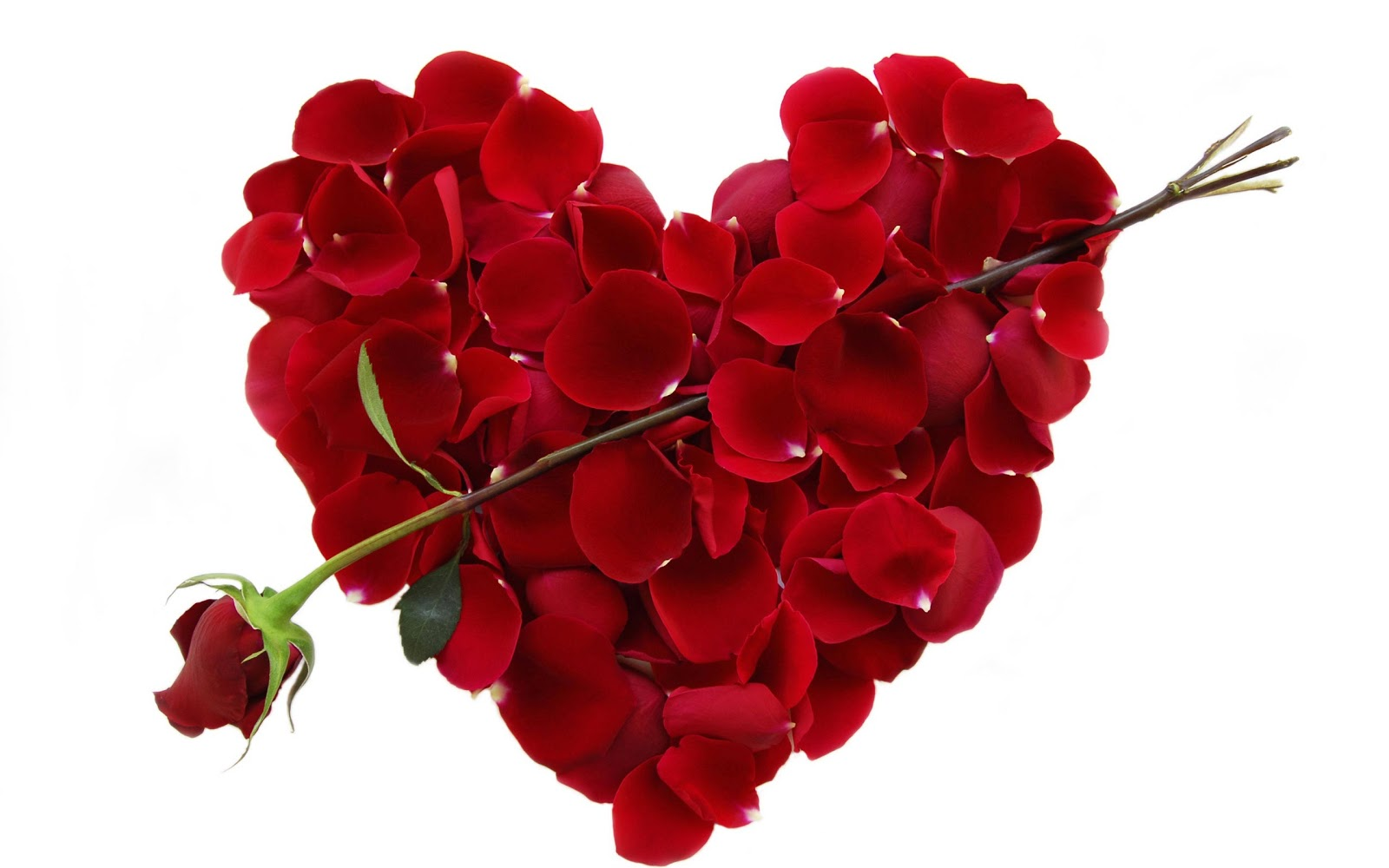 Uncovering the secret language of valentines day flowers the valentinesdayflowerheart izmirmasajfo Choice Image