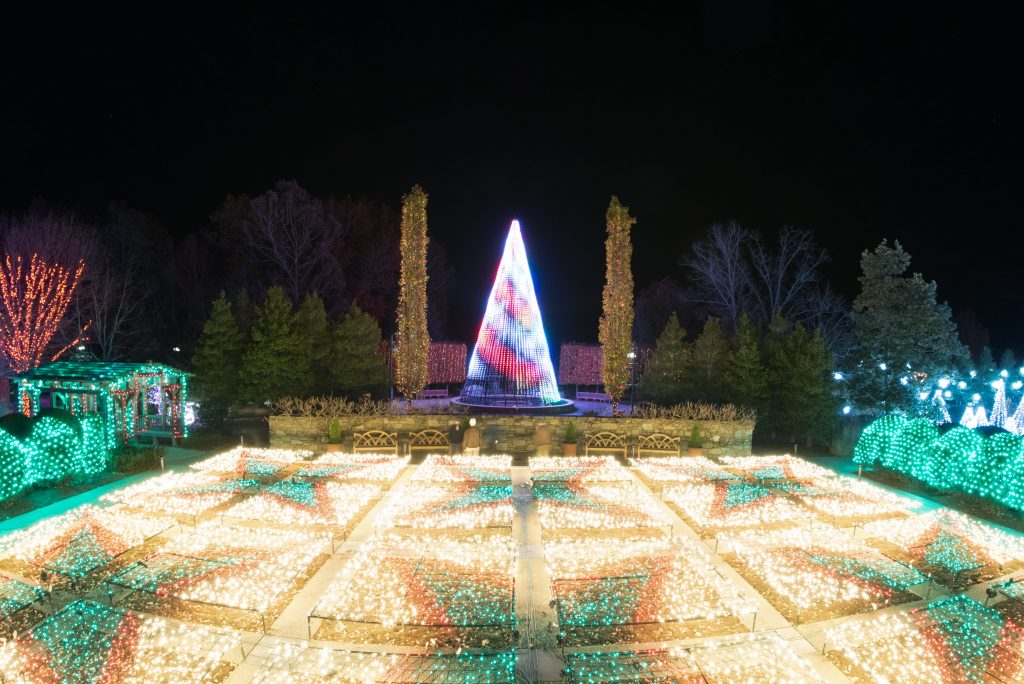 Winter Lights - The North Carolina Arboretum