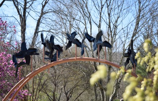 "7 - ""A Flock of Black Birds"" by Jim Gallucci"